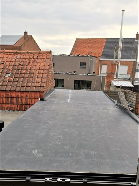 roofing renoveren