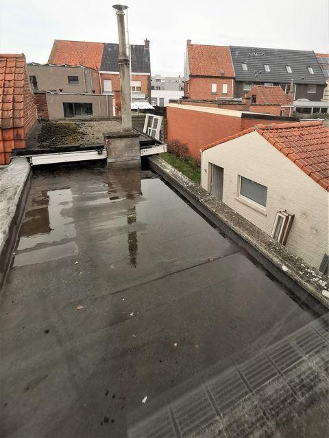 renoveren roofing