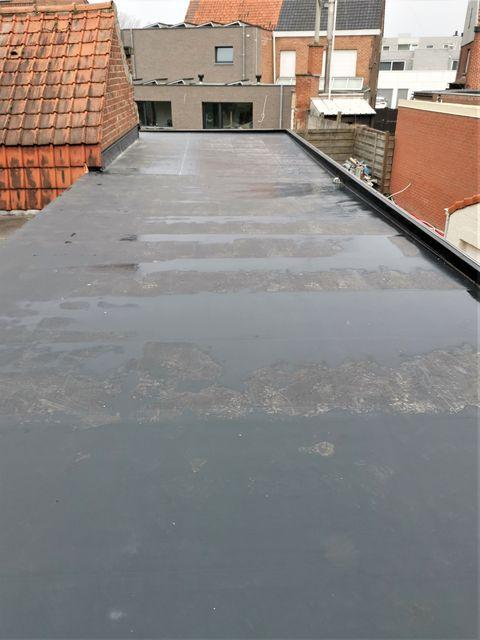 renovatie roofing